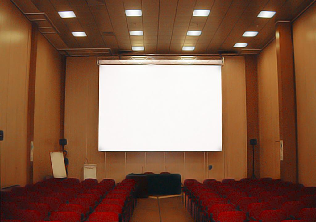 Проекционный экран Hercules в малом зале